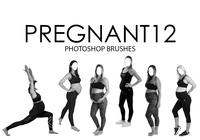 Pregnant Photoshop Brushes 12