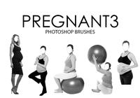 Pregnant Photoshop Brushes 3