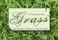 20 Grass Texture PS Brushes.abr vol.1