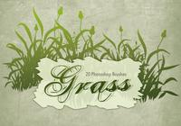 20 Grass Silhouette PS Brushes.abr vol.8