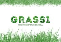 Cepillos de Photoshop Grass 1