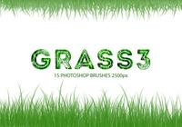 Grass Photoshop-penselen 3