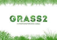 Grass Photoshop Brushes 2