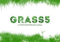 Grass Photoshop Brushes 5