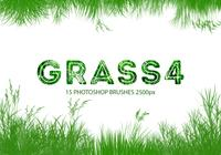 Grass Photoshop-penselen 4
