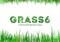 Cepillos de Photoshop Grass 6
