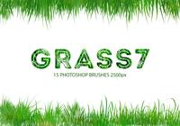 Grass Photoshop Brushes 7
