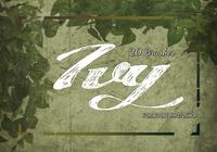 20 Ivy PS Brushes abr. Vol.12