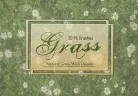 20 Grass Texture PS Brushes.abr vol.2