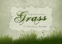 20 herbe silhouette ps brushes.abr vol.5