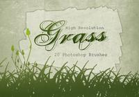 20 Grass Silhouette PS Brushes.abr vol.6