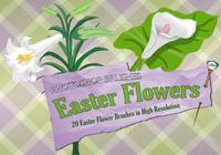 20 Easter Flower PS Brushes abr. vol.2