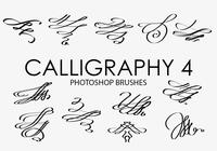 Calligraphy Photoshop Brushes 4
