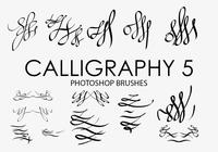 Calligraphy Photoshop Brushes 5