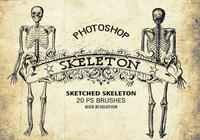 20 Sketched Skeleton PS Brushes abr. vol.1