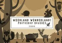 Escovas de Photoshop Woodland Wonderland1
