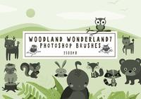 Pinceaux Photoshop Wonderland de Woodland7