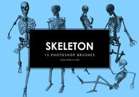 Skeleton Photoshop Brushes
