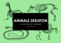 Animals Skeleton Pinceles para Photoshop