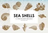Sea Shells Pinceles para Photoshop