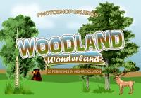 20 Escovas PS Woodland Wonderland