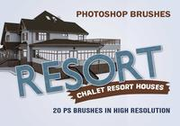 20 Resort PS Bürsten abr.