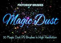 20 Magic Dust PS-borstels abr.