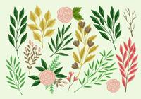 Hand Drawn Collection of Botanical Elements