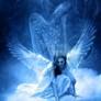 _angels__2_