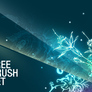Free_floral_brushes_pack_1_by_elenasham
