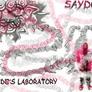 Sayd_s_laboratory_copy
