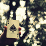 The-ace-of-spades