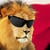 H_lion_icon_250x250